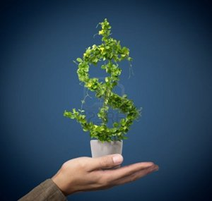 plant in shape of money sign